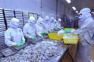 Bộ Thương mại Mỹ công bố mức thuế sơ bộ 0% với tôm Việt Nam