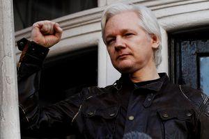 Nhà sáng lập WikiLeaks Julian Assange bị bắt