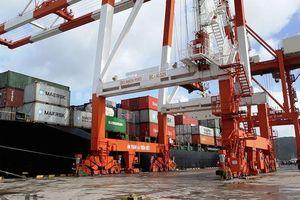 Bình Định: Vinalines có 'động thái', Cảng Quy Nhơn bất ngờ dời đại hội cổ đông