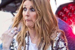 Hit của Celine Dion kinh điển là vậy nhưng vào tay La chí Tường thì lại 'lầy lội' cực độ như thế này!