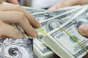 Thanh tra Chính Phủ chỉ đạo phòng, chống rửa tiền và tài trợ khủng bố