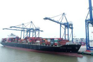 Mở tuyến vận tải trực tiếp từ Hải Phòng xuyên Thái Bình Dương đi Hoa Kỳ và Canada