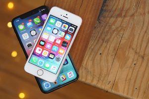 Apple thêm quá trình xác nhận mua sắm ứng dụng trả phí