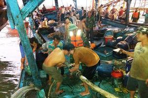 Tàu câu mực va vào rạn đá ngầm, nhiều ngư dân bị thương