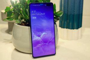 Người dùng kêu trời vì lỗi kết nối của Samsung Galaxy S10 5G
