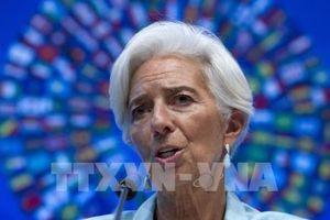 Kinh tế thế giới đang đối mặt với một quãng thời gian bất trắc cao