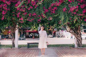 Hoa giấy Đà Nẵng: Thiên đường check-in của giới trẻ Đà thành