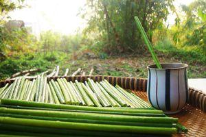 Thầy giáo bỏ nghề, 'về vườn' sản xuất ống hút bằng cỏ, thay thế sản phẩm nguy hại môi trường
