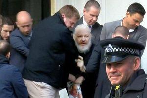 Chiến dịch 36 giờ 'nghẹt thở' bắt giữ ông chủ WikiLeaks
