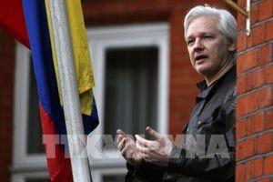 Các nghị sĩ Anh kêu gọi dẫn độ nhà sáng lập WikiLeaks về Thụy Điển