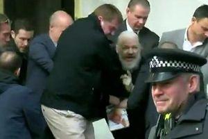 Video Nhà sáng lập WikiLeaks Julian Assange bị đưa khỏi ĐSQ Ecuador