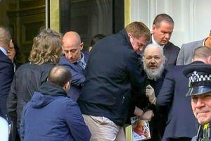 Lời kêu cứu 'gan ruột' từ người cha của nhà sáng lập WikiLeaks