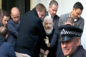 Clip: Cuộc chiến pháp lý của ông chủ WikiLeaks sau 7 năm trốn chạy