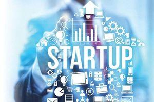 Startup Việt tăng mạnh thu hút vốn nhưng vẫn lộ nhiều điểm yếu