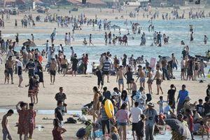 Vũng Tàu: Hàng trăm du khách bị sứa cắn khi đang tắm biển