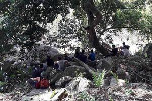 Tây Ninh: 2 người bị ong đốt nguy kịch khi đang leo núi Bà Đen