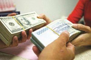 Tỷ giá ngoại tệ ra sao từ đầu năm đến nay?