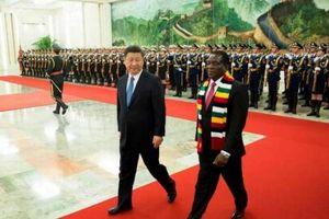 Anjin Investments - Công ty khai thác kim cương Trung Quốc từng bị trục xuất đã lặng lẽ trở lại Zimbabwe