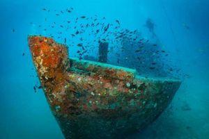 Cận cảnh những xác tàu và máy bay dưới đáy đại dương (P2)