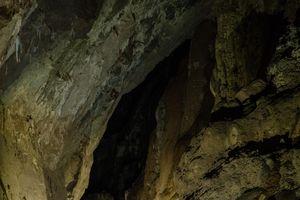 Cần kiểm chứng sự sụp đổ của hang Sơn Đoòng trong tương lai