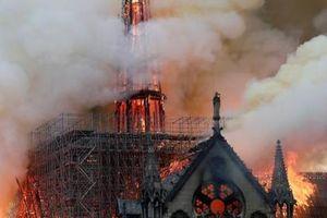 Người dân Mỹ bắt đầu gây quỹ xây dựng lại nhà thờ Đức Bà Paris