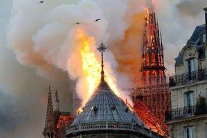 Sao Việt bày tỏ sự nuối tiếc khi nghe tin nhà thờ Đức Bà Paris chìm trong biển lửa