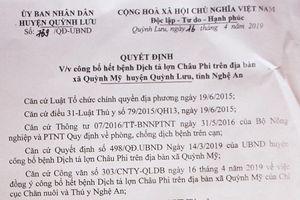 Nghệ An: Công bố hết dịch tả lợn Châu Phi tại Quỳnh Lưu