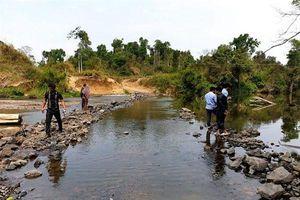 Cá chết bất thường ở Gia Lai bị nghi do nhà máy mỳ ở Kon Tum xả thải