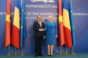 Romania sẽ thúc đẩy EU sớm phê chuẩn Hiệp định EVFTA