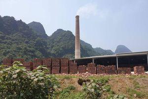 Kỳ lạ ở Nghệ An: Phê duyệt sản xuất một đằng, bán sản phẩm một nẻo