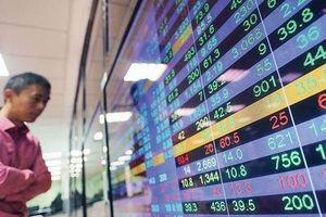 Hơn 3000 nhà đầu tư Trung Quốc tham gia TTCK Việt Nam