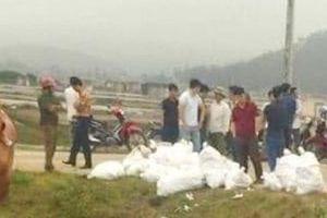 Nghệ An: Phát hiện số lượng 'khủng' ma túy đá