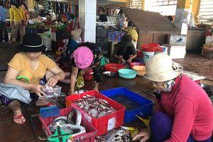 Tìm lời giải cho bài toán rác thải nhựa nơi đảo xa - Kỳ II: Điểm sáng Cù Lao Chàm