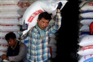 Campuchia đưa EU ra tòa về thuế nhập khẩu gạo