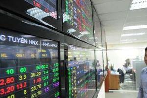 Thị trường chứng khoán: Đo 'khẩu vị' thị trường về chỉ số