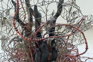 'Nhựa cây vẫn chảy', một triển lãm kỳ lạ có mặt tại Sài Gòn