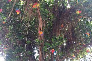 Tháng 4, Siem Reap rợp trời sao may mắn