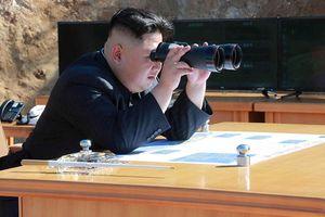 Chủ tịch Kim Jong-un thị sát vụ thử vũ khí 'chiến thuật' mới