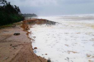 Thừa Thiên Huế lên kế hoạch diễn tập về ứng phó với bão mạnh, lũ lớn