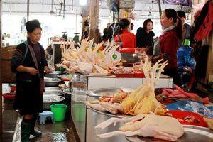 Lào Cai: Nói không với thực phẩm giả, thực phẩm kém chất lượng