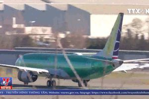 Máy bay Boeing 737 lại gặp sự cố