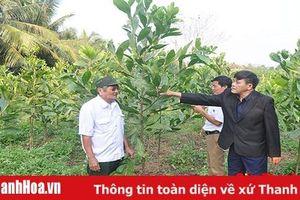 Đảng bộ huyện Như Thanh lãnh đạo phát triển kinh tế