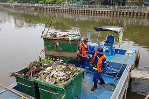 Cá trên kênh Nhiêu Lộc - Thị Nghè quá nhiều nên cần phải giảm bớt