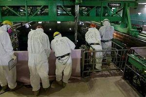 Nhật Bản thuê công nhân nước ngoài dọn rác hạt nhân