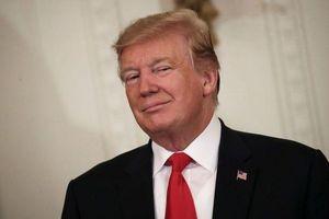 Tổng thống Mỹ Trump ăn mừng về kết quả điều tra ông câu kết với Nga