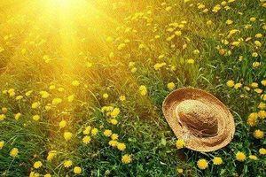 Dự báo thời tiết ngày 20/4: Nắng nóng lợi hại đốt da hun thịt