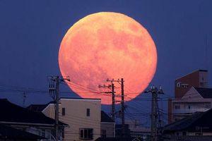 Trăng Hồng sẽ xuất hiện vào 18 giờ hôm nay, đây là cách để bạn có thể chụp những bức hình đẹp nhất