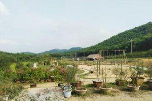 Hà Tĩnh: Đình chỉ dự án KDL sinh thái và trải nghiệm giáo dục Hoa Hồng do sai phạm về đất đai