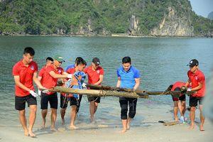 Bầu Tam cùng CLB Than Quảng Ninh cùng nhặt rác chung tay làm sạch biển