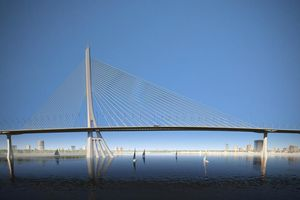 Chọn thiết kế cầu dây văng hình tượng cây Đước làm cầu Cần Giờ